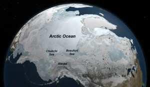 Científicos de la NASA asombrados por super floración en el Ártico