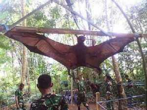 Murciélago gigante en Perú
