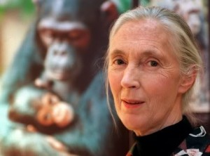 Jane-Goodall-afirma-que-el-Bigfoot-existe