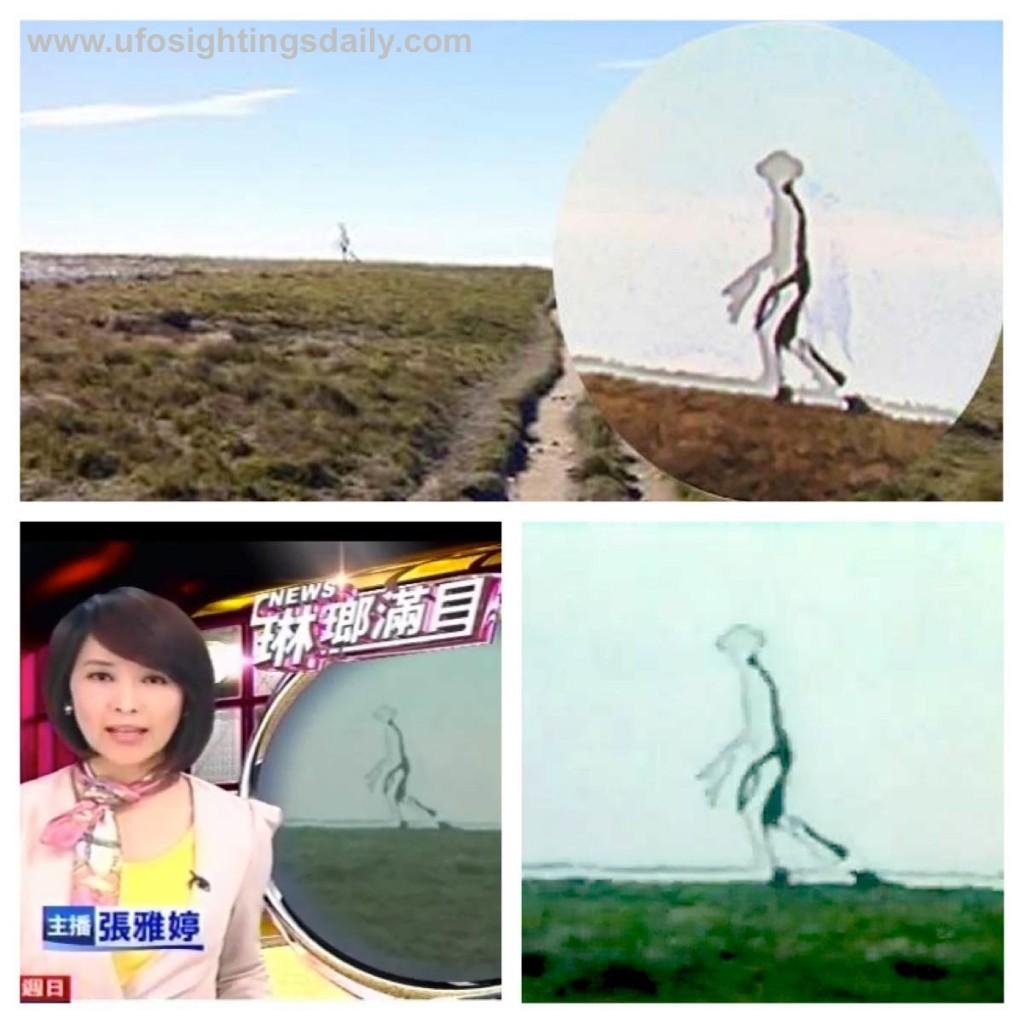 Supuesto extraterrestre fotografiado en Taiwan, China
