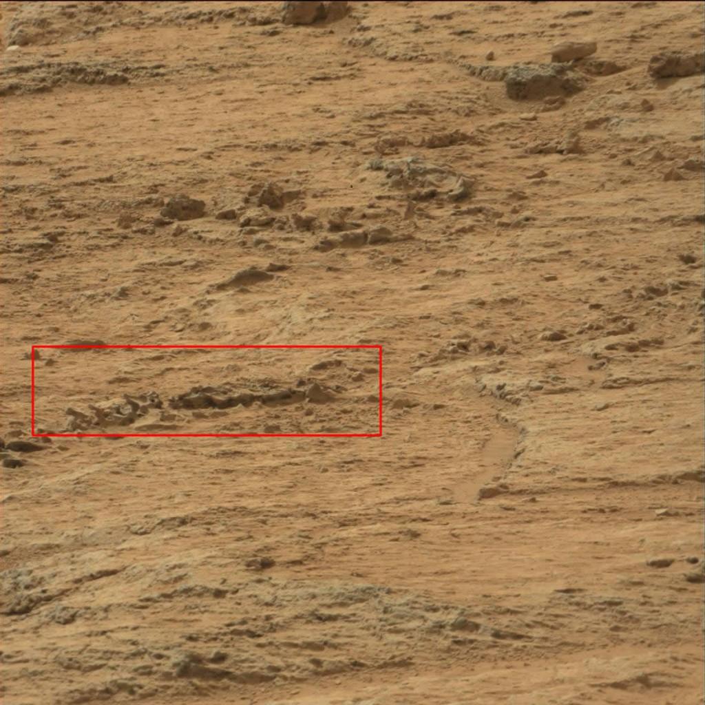Fósiles en Marte