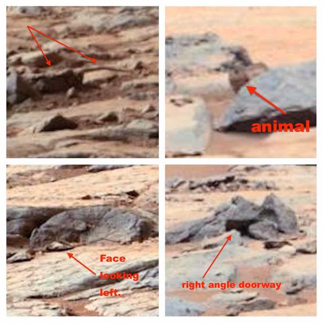 Evidencia de vida en Marte