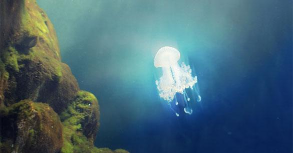Los OVNIS y los océanos