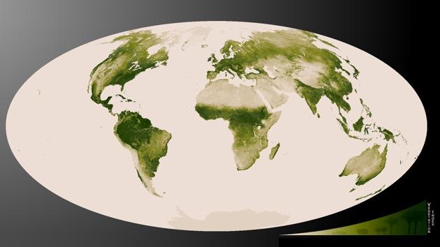 Mapa de vegetación en la Tierra provisto por la NASA