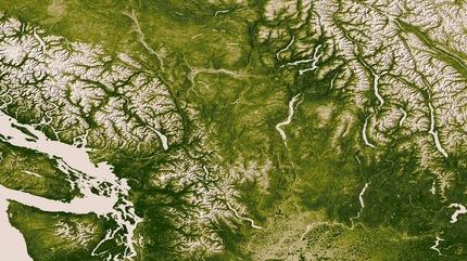 Mapa de vegetación en la Tierra