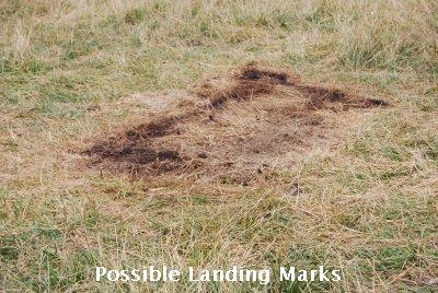 Posibles marcas de aterrizaje de OVNI alrededor del cadáver de la vaca