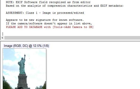 Análisis en software especializado demuestra que la imagen es procesada o editada