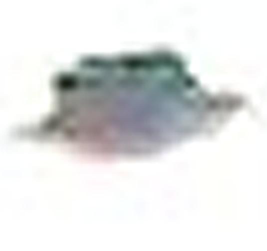 Ampliación de la anomalía fotografiada. Vemos la forma convencional de un OVNI pero no parece ser de un material sólido y da la impresión de ser una mancha de pintura o algo similar.
