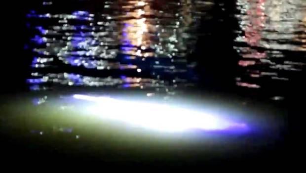 ¿Es esto una criatura luminiscente en la superfie del mar de Inglaterra?