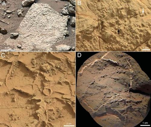Evidencias de un antiguo lago de agua dulce en Marte