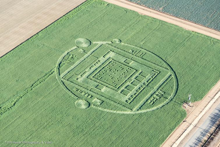 Un elaborado crop circle atrae a multitudes en California