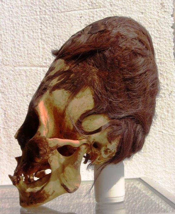 Cráneo Paracas con cabello rojizo