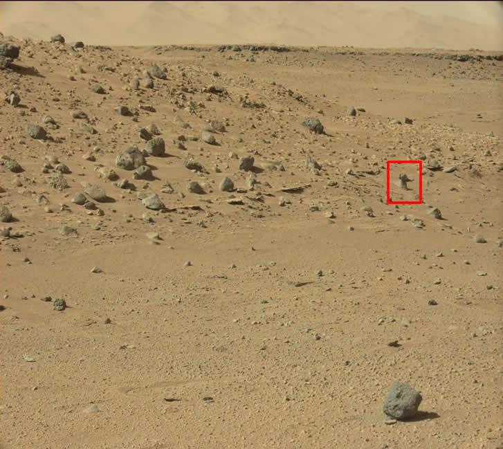 Interesante anomalía habría sido hallada en fotografías del Curiosity Rover