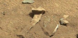 ¿Un hueso parecido al fémur en Marte?