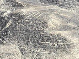 Fuertes vientos dejan a la vista nuevos geoglifos en Nasca