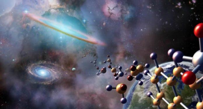 ADN sobrevive a viaje espacial