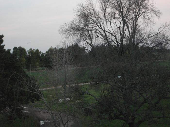 OVNI capturado en imagen tomada en Dpto. de Soriano, Uruguay.
