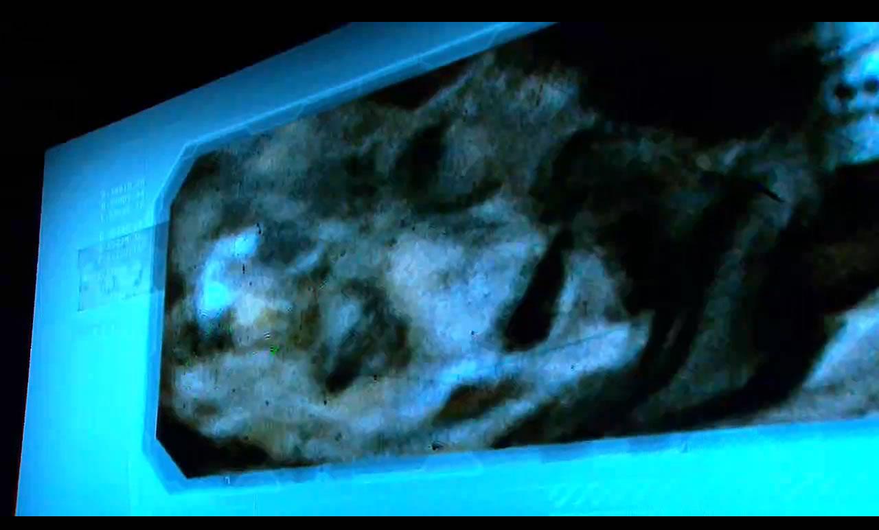 Un especialista declaró sobre esta imagen, que no se trataría de una momia, pues los ojos se encontraban salidos, y no como lo mostraría una momia: hacia dentro.