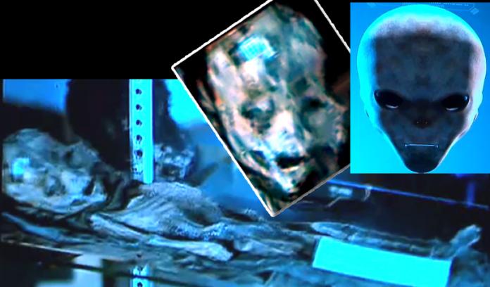Primera diapositiva mostrada en el evento #BeWITNESS del supuesto ser extraterrestre recuperado del incidente de Roswell.