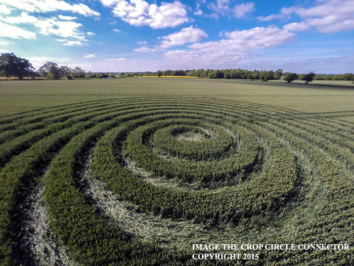 Crop Circle reportado en Wiltshire. 9 de junio (2015) Crédito: Crop Circle Connector