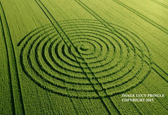 Crop Circle reportado en Wiltshire. 9 de junio (2015) Crédito: Lucy Pringle