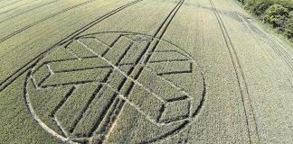 Crop Circle reportado en Sussex, UK. 22 de junio (2015).
