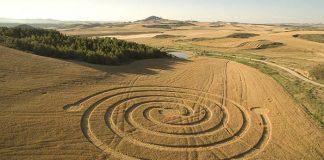 Un círculo de la cosecha apareció en campos de trigo en la comunidad de Navarra, España.