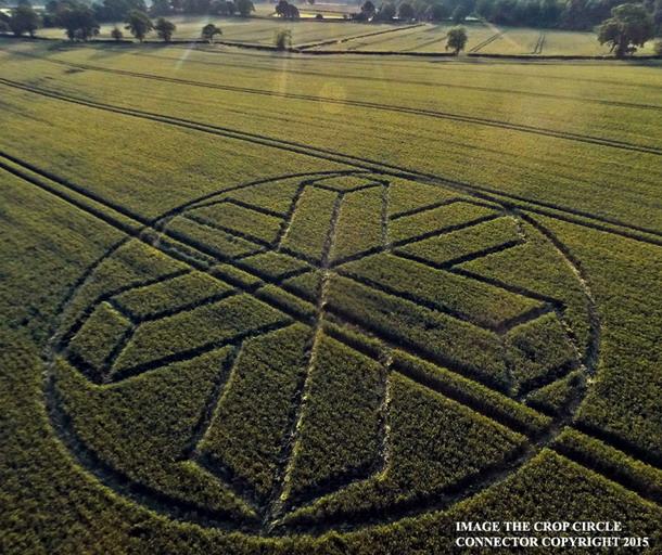 Crop Cricle reportado en British West Sussex, Horsham Reino Unido el 22 de junio del 2015.