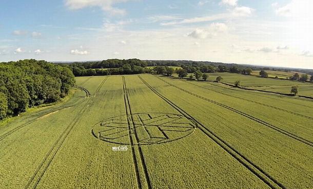 Otra toma del Crop Cricle reportado en British West Sussex, Horsham Reino Unido el 22 de junio del 2015.