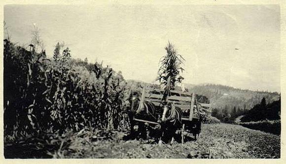 OVNI en fotografía tomada en EE.UU. en 1920.