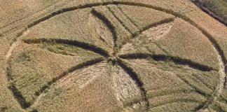 Crop Circle reportado en Knoll de Down, Wiltshire, Reino Unido. Se informó el día 29 de junio (2015).