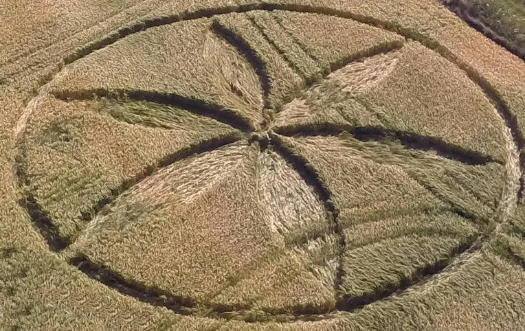 Crop Circle reportado en Wiltshire, Reino Unido. 29 de junio 2015.