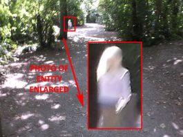 """Testigo cree haber fotografiado a un """"Pleyadiano""""."""
