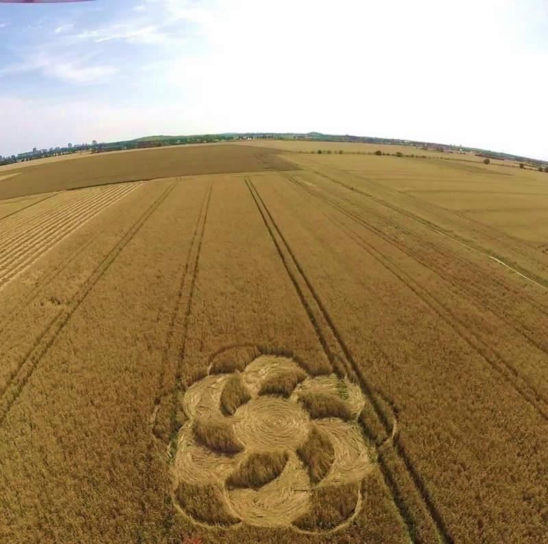 Crop circle en Brandenburg - Agosto 2015