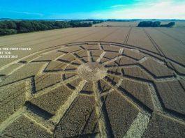Un nuevo crop circle aparece en Wiltshire, Inglaterra.