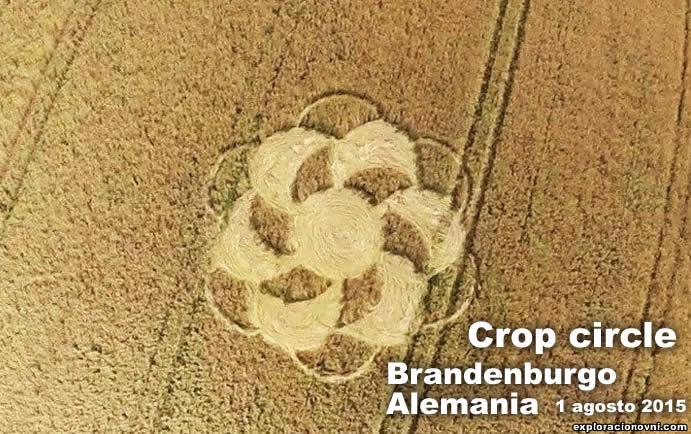 Crop circle reportado en Alemania. 1 de agosto 2015. Crédito: Kleine Fee