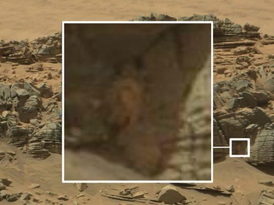 """El supuesto """"cangrejo de Marte"""" despierta la polémica. Sin embargo es solo un refrito."""
