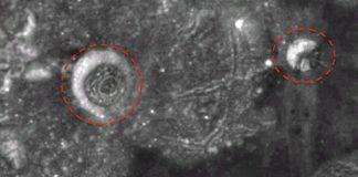 Desde hace varias décadas se viene planteando la existencia de bases extraterrestres en la Luna.