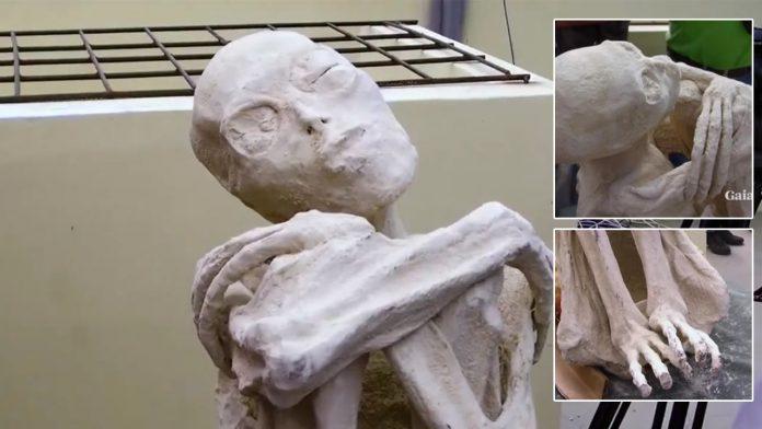 Momia «extraterrestre» de Nasca, Perú: Científico realiza el análisis de manos y pies