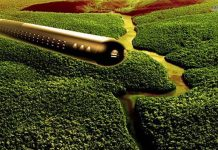 El OVNI en forma de Cigarro que fue captado por Google Earth en el Bosque Amazónico