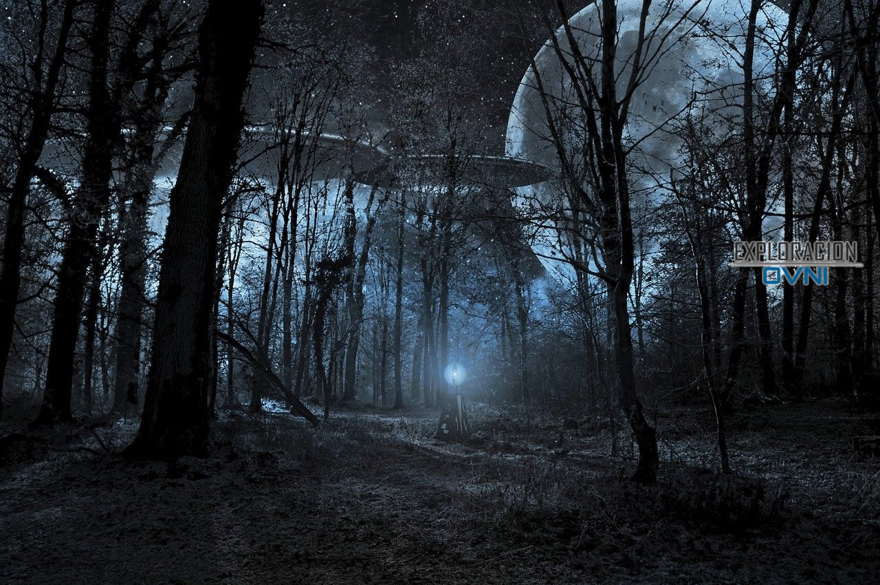 Incidente de Bosque negro en Alemania en 1936 ¿Primer intento de ingeniería inversa en un OVNI?